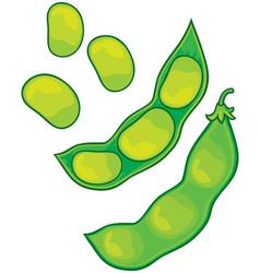 soybean vector image
