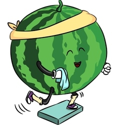 beautiful ripe watermelon is engaged in fitness vector image vector image