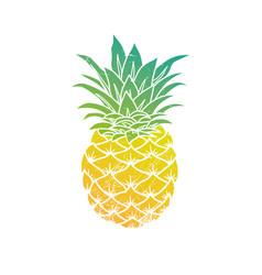 pineapple modern vector image