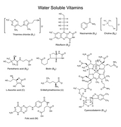 Structures formulas of watersoluble vitamins vector