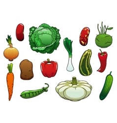 Healthy organic fresh vegetables on white vector