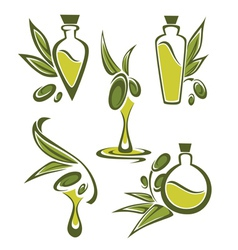 green olive and oil vector image
