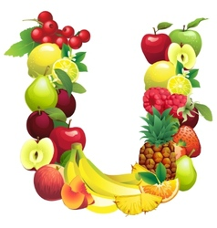Letter U composed of different fruits with leaves vector image vector image
