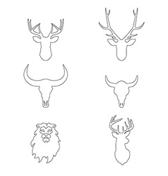 Outline heads of animals deer lion buffalo in vector