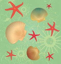 Seashells Pattern Background vector image vector image