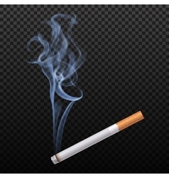 Burning Cigarette Background vector image