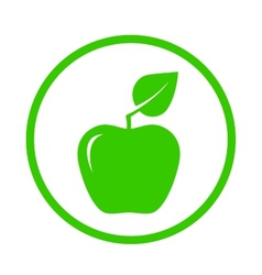 Apple with green leaf vector