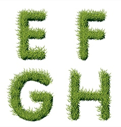 Green grass alphabet e f g h vector