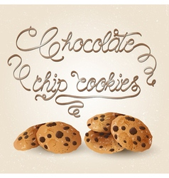Cookies brown vector