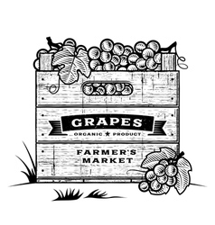 Retro crate of grapes black and white vector image