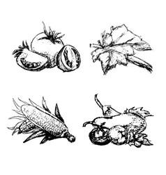 Hand drawn vintage set of vegetables vector