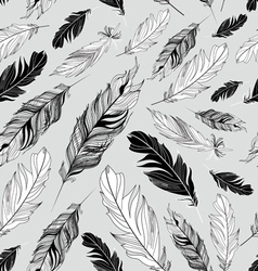 Pattern of feathers vector