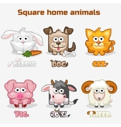 Cute cartoon square home animals vector