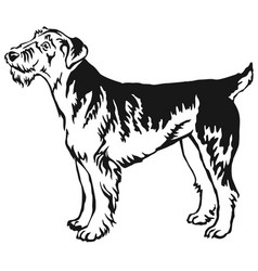 Decorative standing portrait of airedale terrier vector
