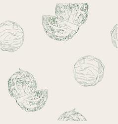 set of cabbage hand drawn sketch line art vector image vector image