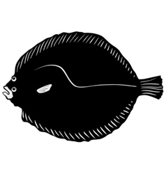 Silhouette of brill vector image