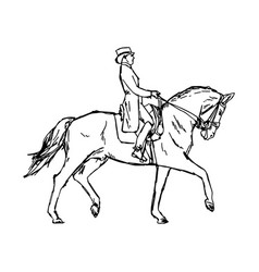 Young rider man on horse at dressage competition vector