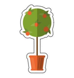 cartoon tree pot decorative garden vector image
