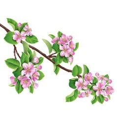 Flowering branch one vector
