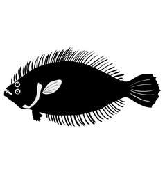 Silhouette of flounder vector