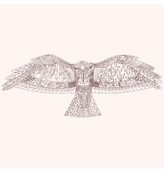 Patterned predator bird eps10 vector