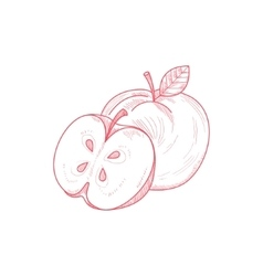 Fresh apple hand drawn artistic sketch vector