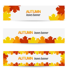 Autumn leaves banners vector image vector image