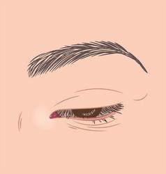 close female eye vector image