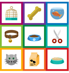 Flat icon animal set of nutrition box cat eatin vector