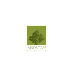oak tree design element vector image