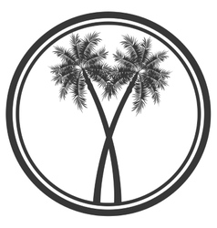 palm tree emblem icon vector image