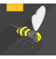 Bee isometric vector