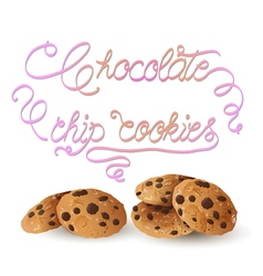 Cookies w vector