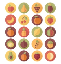 Fruits Flat Icon with Long Shadow vector image vector image