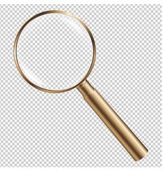 Golden magnifying vector