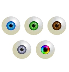 set of eyeballs vector image