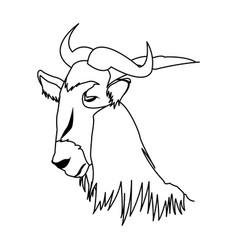wildebeest head african wildlife animal vector image vector image