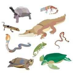 Reptiles and amphibians decorative set of cobra vector
