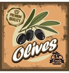 vintage olive sign vector image