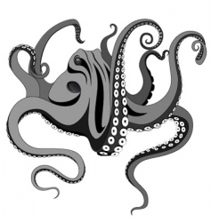 octopus tattoo vector image