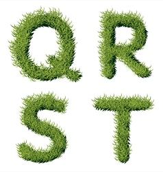 Green grass alphabet q r s t vector