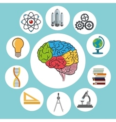 Science design colorfull  brain icon vector