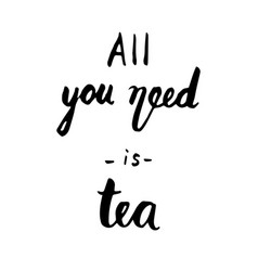 all you need is tea quote ink hand lettering vector image