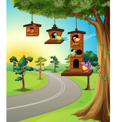 birds in birdhouse on tree vector image vector image