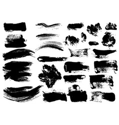 detail brush paint stroke collection vector image vector image