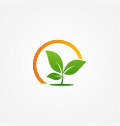 Plant seed organic green logo vector