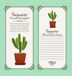 vintage label with saguaro plant vector image vector image