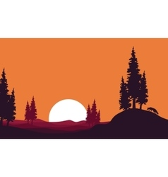 At afternoon landscape fox silhouettes vector