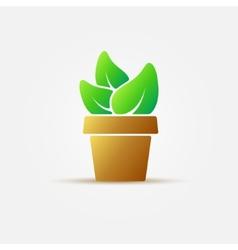 Bright houseplant icon vector image
