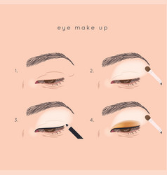 Eye make up tutorial how to apply eyeshadow vector